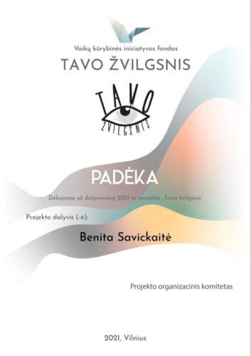 TAVO ŽVILGSNIS  - Benita Savickaitė