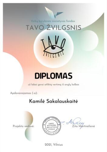 TAVO ŽVILGSNIS  - Kamilė Sakalauskaitė